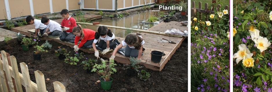 Wildlife Garden for Walker School